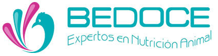 BEDOCE